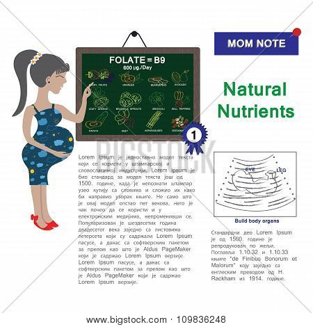 Pregnancy Vector Design. Folate Or Vitamin B9 Healthy Information Natural Nutrients For Pregnant  In