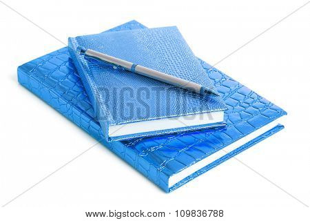 blue notebook with silver pen