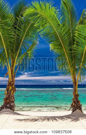 Two small palm trees over stunning blue lagoon, Cook Islands