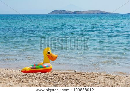 Duck swimming tube on the beach