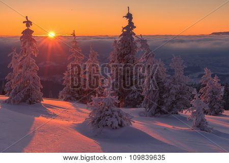 Fantastic orange evening landscape glowing by sunlight. Dramatic wintry scene with snowy trees. Kukul ridge, Carpathians, Ukraine, Europe. Merry Christmas!