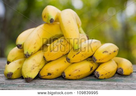 organic bananas on the wooden table at the farm, outdoor