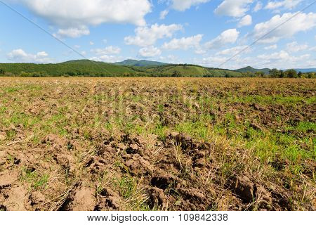 Plowed field after harvesting crops grown. Autumn day.