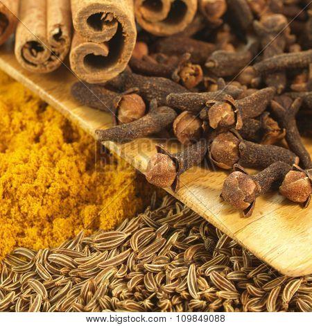 Closeup Of Cinnamon, Cumin,curry, Winter Spices, Square