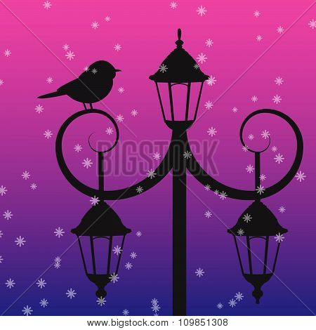 Silhouette Of Bird Sitting On Lamppost Under The Snow
