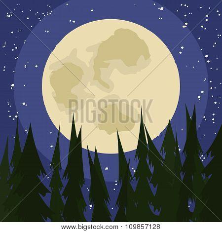 full moon night at woods