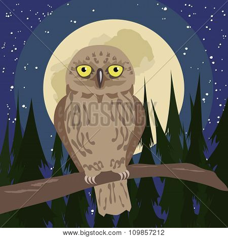 owl at woods with full moon