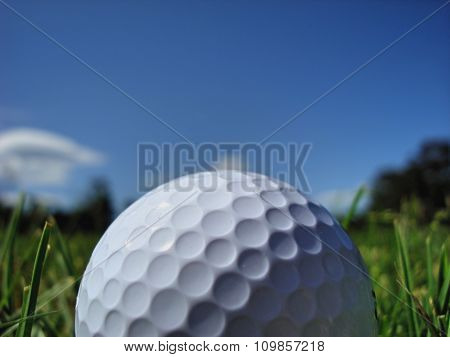 Golf Ball (close up)