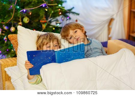Two little sibling boys reading book on Christmas
