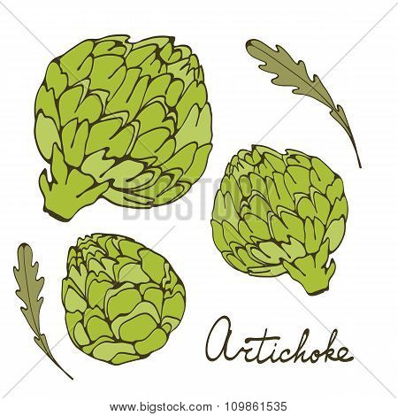 Colorful hand drawn card with artichoke