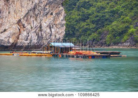 Asian floating village at Halong Bay