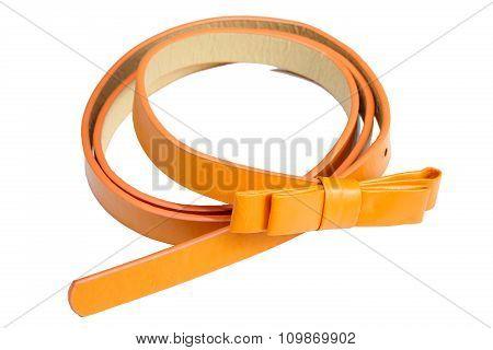 Orange Women Style Belt Isolated