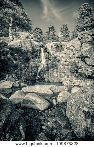 B&w Of Cascade Des Anglais Waterfall Near Vizzavona In Corsica