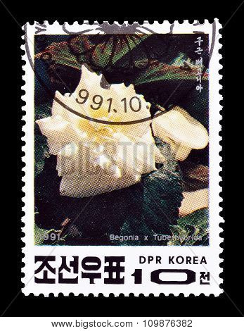 1991 North Korea