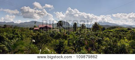 Panoramic view of house, tree, mountain and cloudy sky view of Chiangmai Thailand