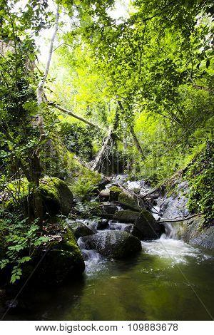 Stream Of Ambroz Valley, Banos De Montemayor, Extremadura