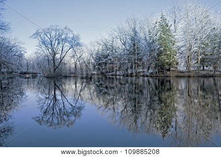 Snowy Winter Tree Reflections