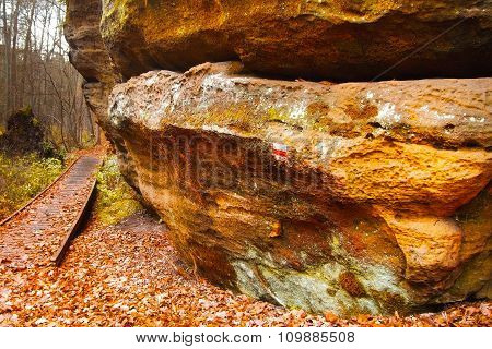 Sandstone Rock After Rain
