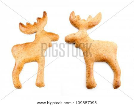 Two gingerbread moose-like cookies on white background