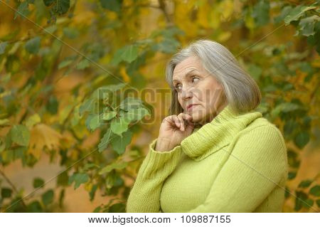 senior woman in summer park