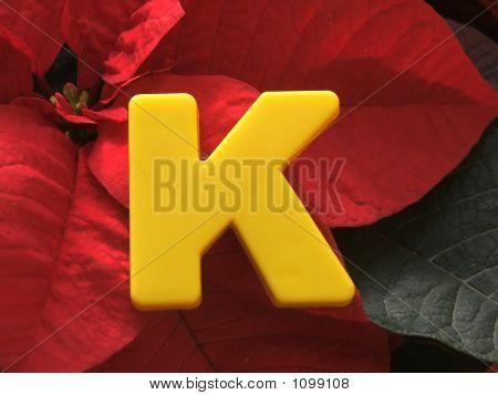 K On Poinsettia