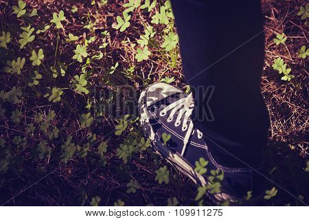 Foot In Sneakers Walking In The Forest. Vintage Tone.