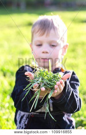 Boy Holding Grass.