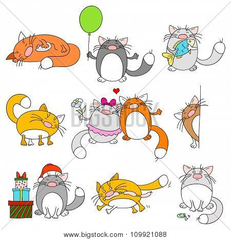 Collection of nine cute funny cats