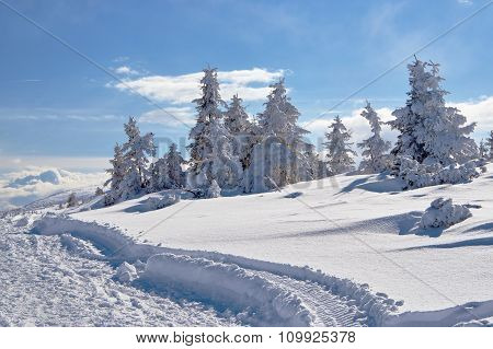 Buried in snow hiking trail Poland