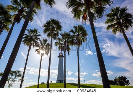 Lighthouse With Palms At Long Beach, California,