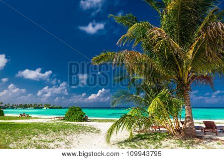 Natural laid-back tropical beach with vibrant green lagoon in Maldives