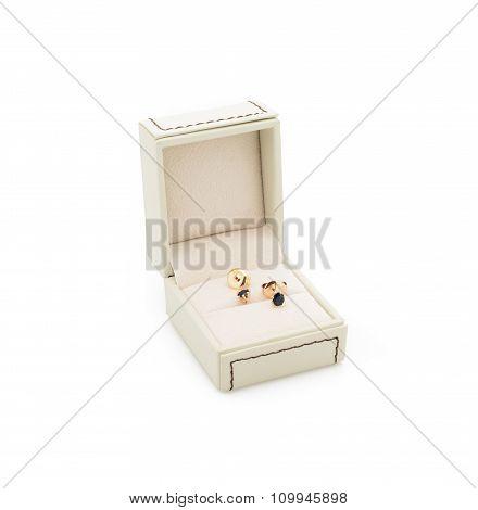 Luxury earrings in light box isolated