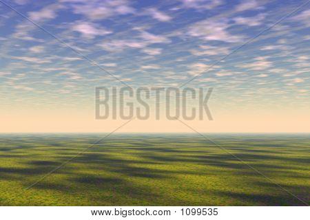 Grass Fiel Landscape