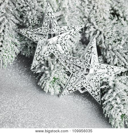 branch of Christmas tree with stars