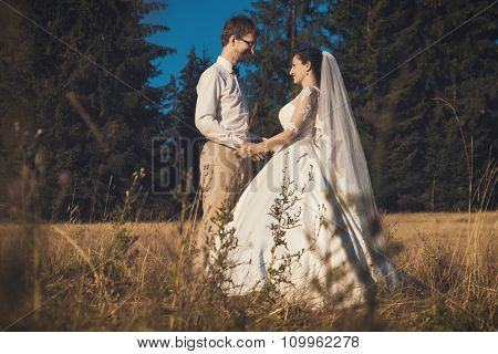 Wedding couple. Bride and groom in forest, summer time.