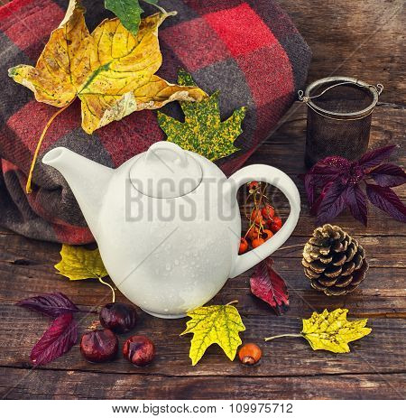 Autumn Still Life With Kettle