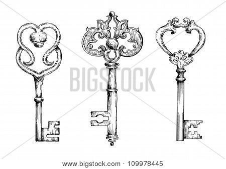 Sketches of vintage keys or skeletons