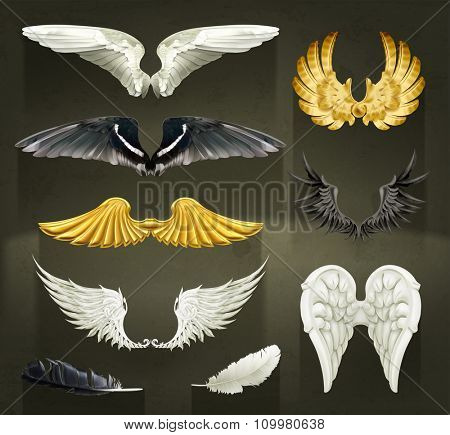 Wings, set vector illustrations on black background