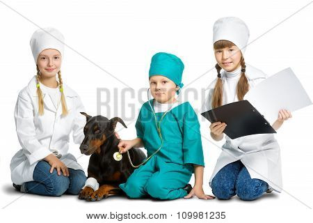 Cute little children dressed like doctor treated dog or doberman  isolated on white background. Vete