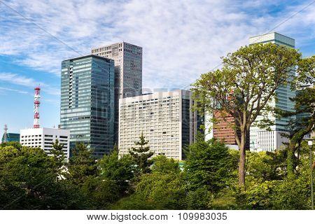 Buildings from East Gardens in Tokyo, Japan