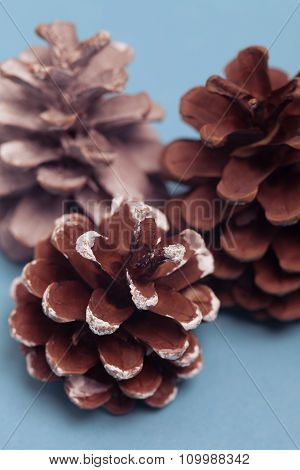 Group of christmas cones