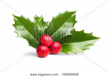 Christmas Holly Berry Leaves Decoration