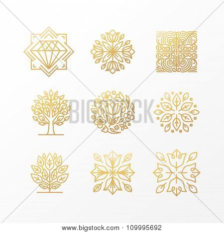 Vector Set Of Abstract Golden Signs