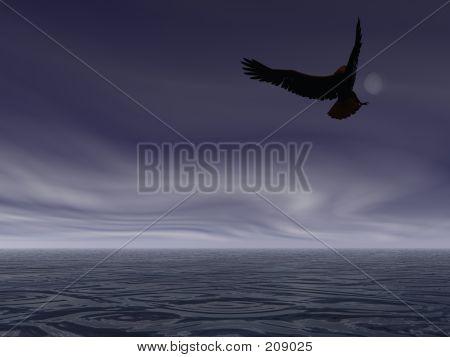 Nacht-Eagle
