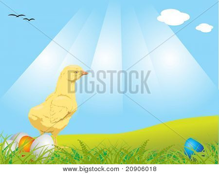 easter chick with eggs on grass at outdoor vector illustration abstract background