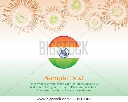vector glossy shield and fireworks, vector illustration