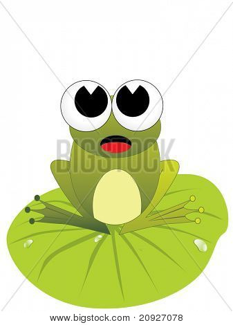 cute frog siting on the leaves