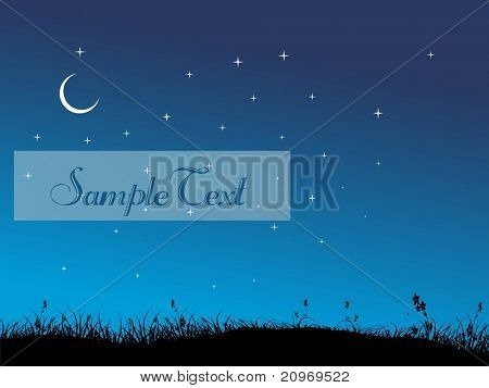 abstract garden background in night, illustration