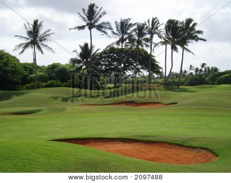 Tropical Hawaiian Golf Course
