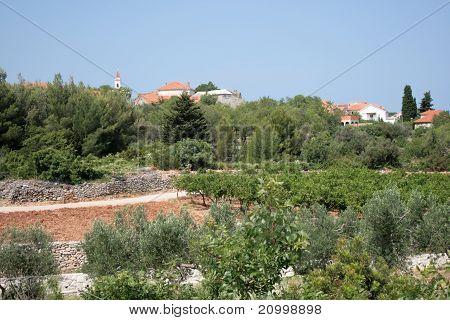 Village on a hilltop